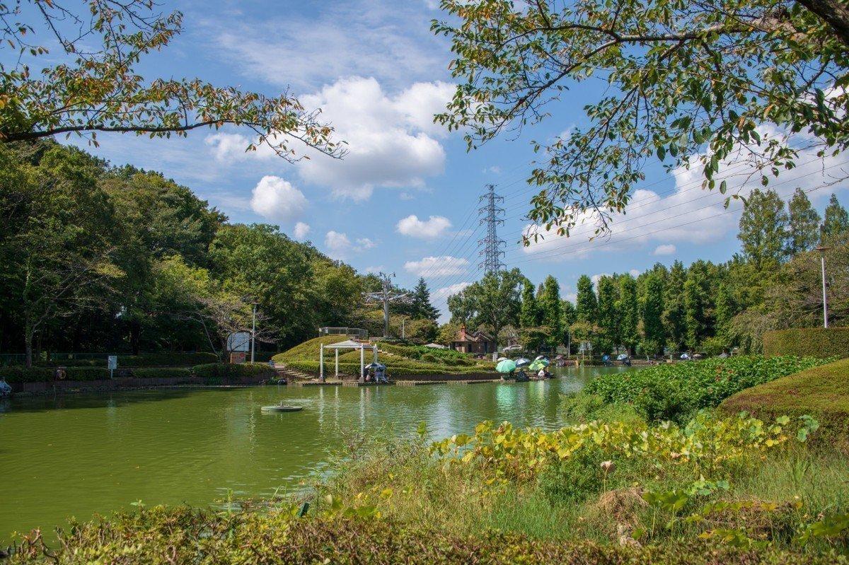 【2020年版】さいたま市緑区 地域型保育園 全17園をご紹介!の画像