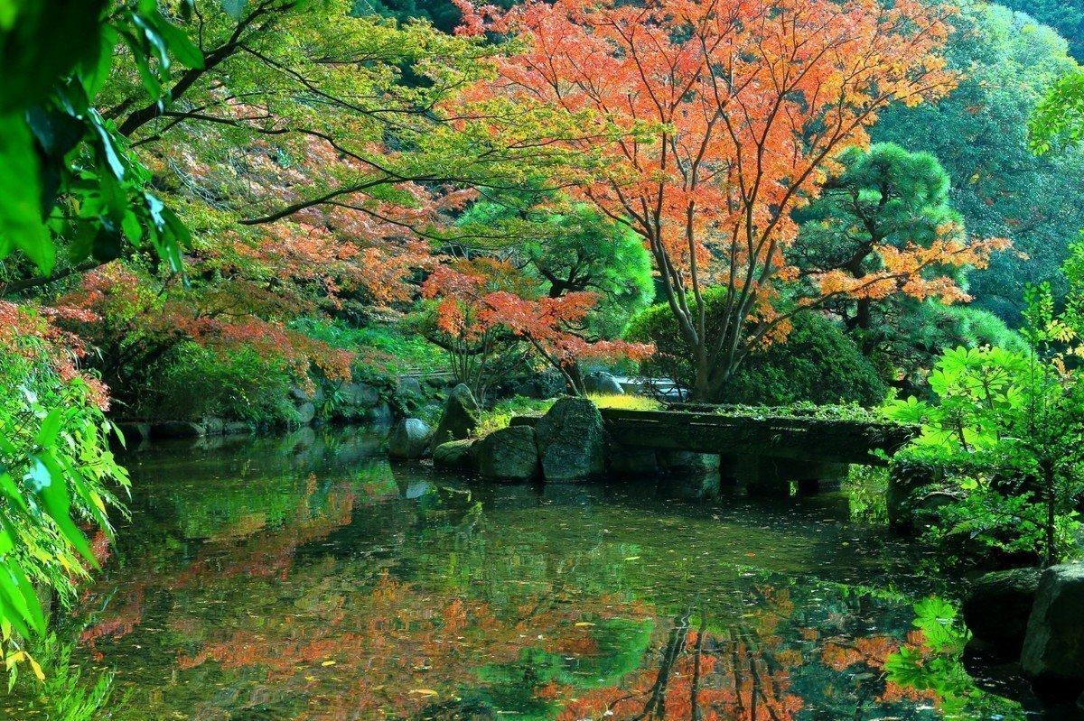 【2020年版】福岡市城南区 認可保育園・認可外保育園・地域型保育園 全36園をご紹介!の画像
